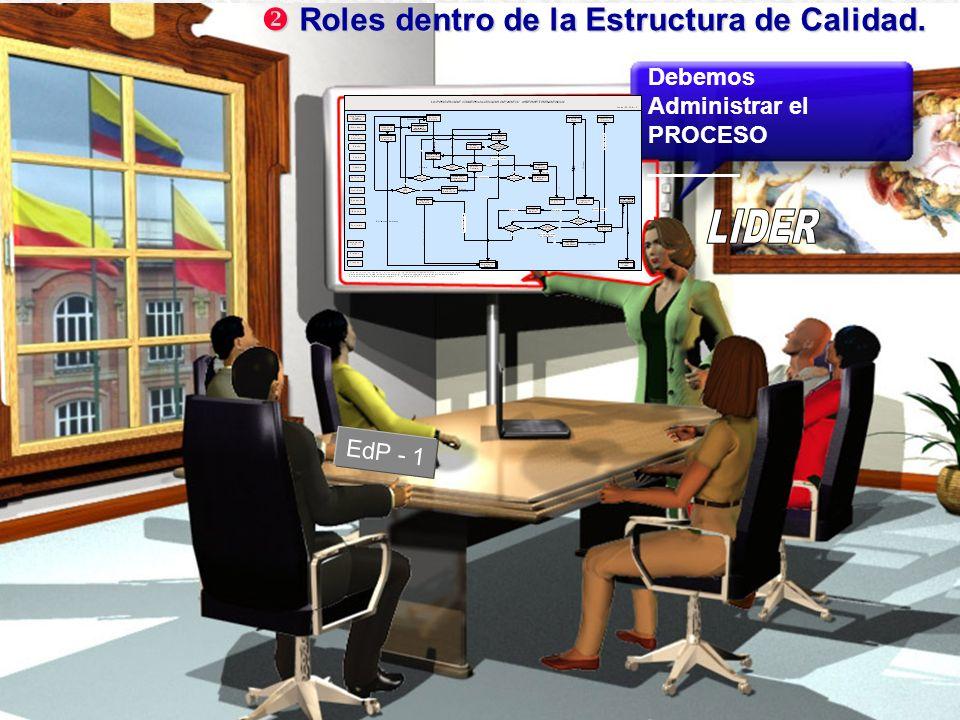 LIDER Roles dentro de la Estructura de Calidad.