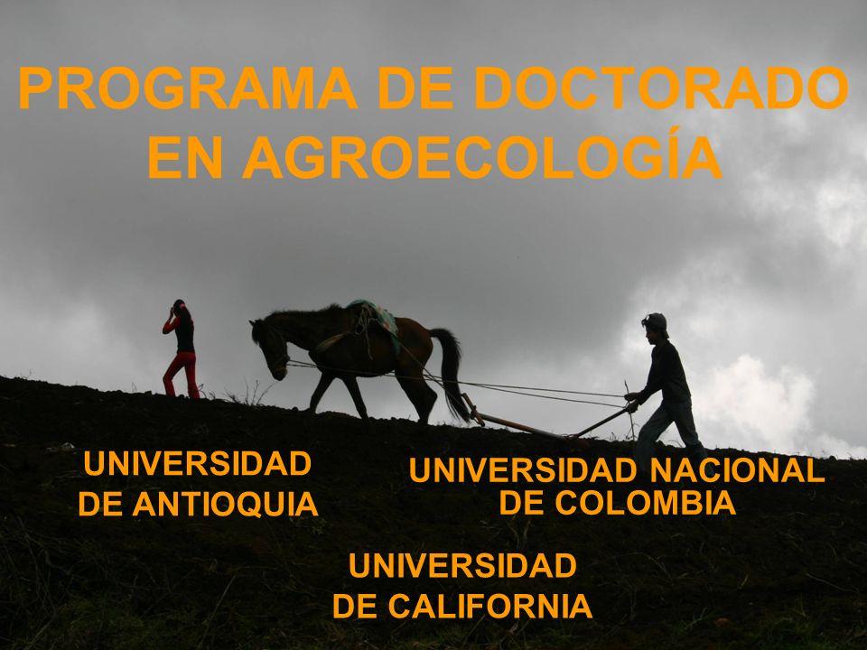 PROGRAMA DE DOCTORADO EN AGROECOLOGÍA