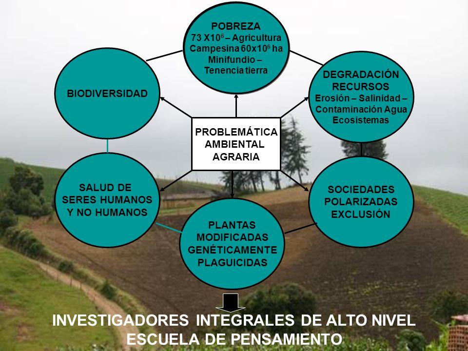 INVESTIGADORES INTEGRALES DE ALTO NIVEL ESCUELA DE PENSAMIENTO