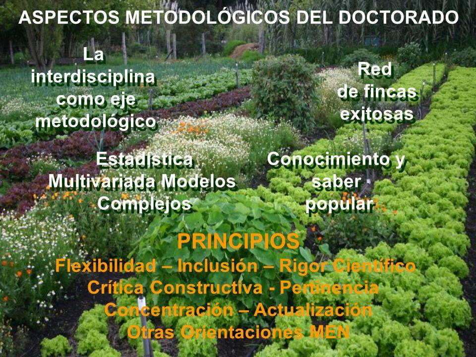 PRINCIPIOS ASPECTOS METODOLÓGICOS DEL DOCTORADO La interdisciplina