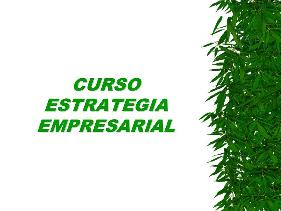 CURSO ESTRATEGIA EMPRESARIAL
