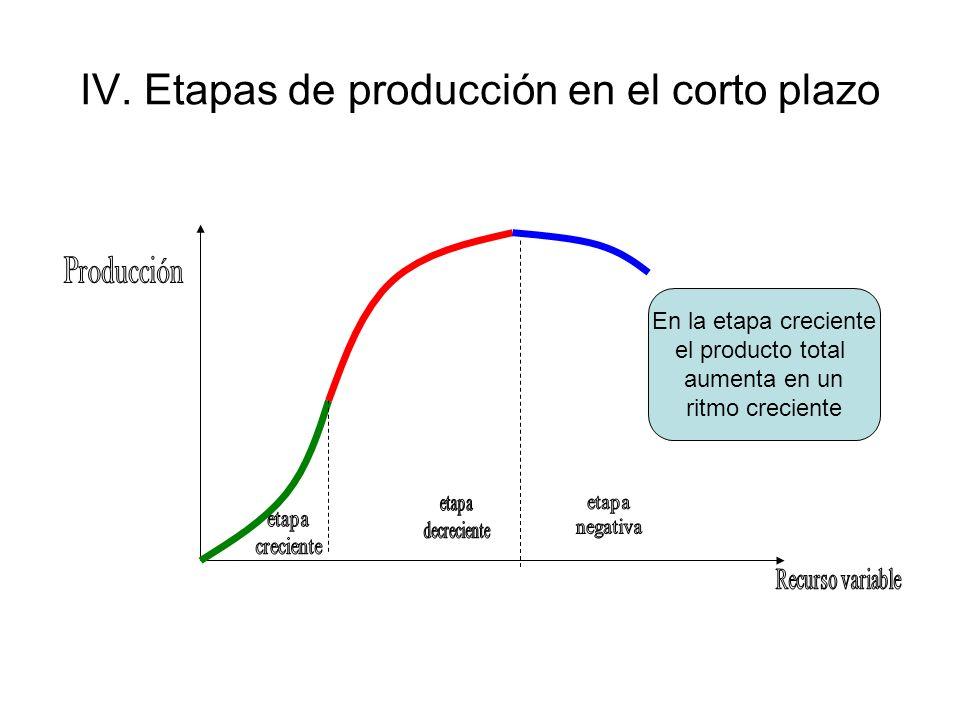 IV. Etapas de producción en el corto plazo