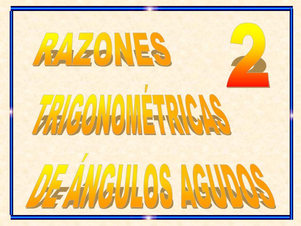 2 RAZONES TRIGONOMÉTRICAS DE ÁNGULOS AGUDOS