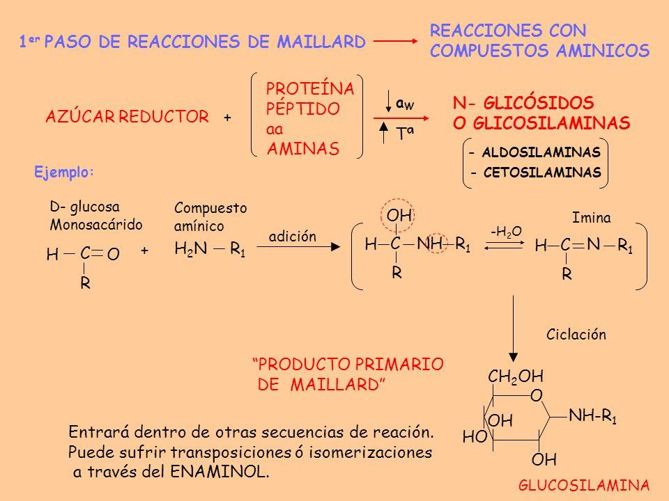 1er PASO DE REACCIONES DE MAILLARD REACCIONES CON COMPUESTOS AMINICOS