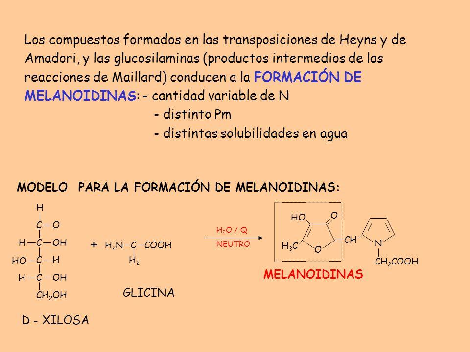 Los compuestos formados en las transposiciones de Heyns y de Amadori, y las glucosilaminas (productos intermedios de las reacciones de Maillard) conducen a la FORMACIÓN DE MELANOIDINAS: - cantidad variable de N - distinto Pm - distintas solubilidades en agua