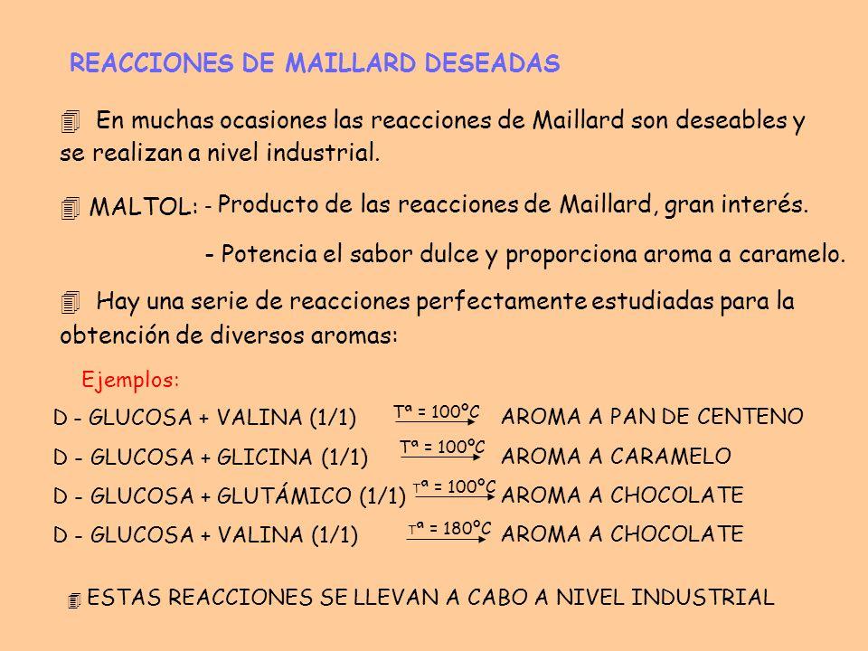 REACCIONES DE MAILLARD DESEADAS