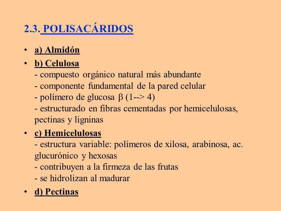 2.3. POLISACÁRIDOS a) Almidón