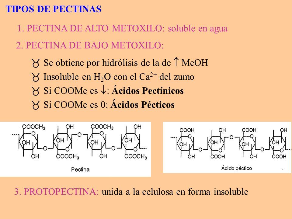 TIPOS DE PECTINAS2. PECTINA DE BAJO METOXILO: Se obtiene por hidrólisis de la de  MeOH. Insoluble en H2O con el Ca2+ del zumo.