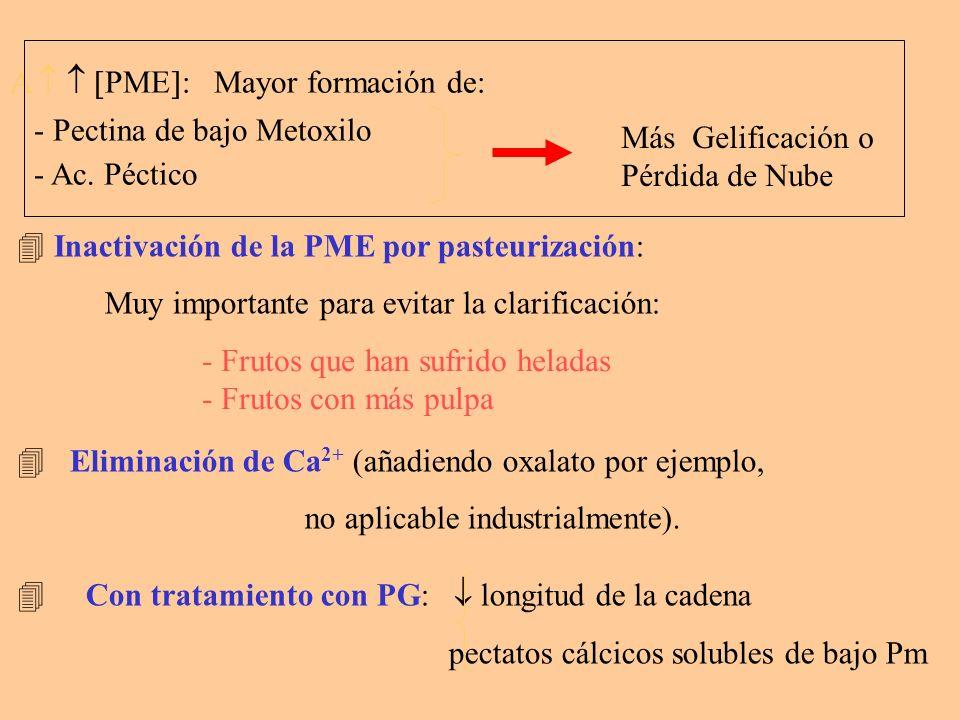 A   PME: Mayor formación de: