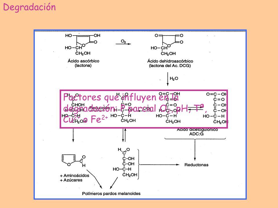 Degradación Factores que influyen en la degradación: P parcial O2, pH, Tª, Cu2+ o Fe2+