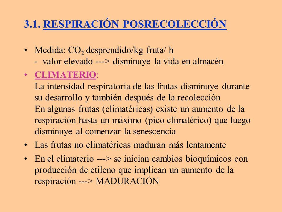 3.1. RESPIRACIÓN POSRECOLECCIÓN