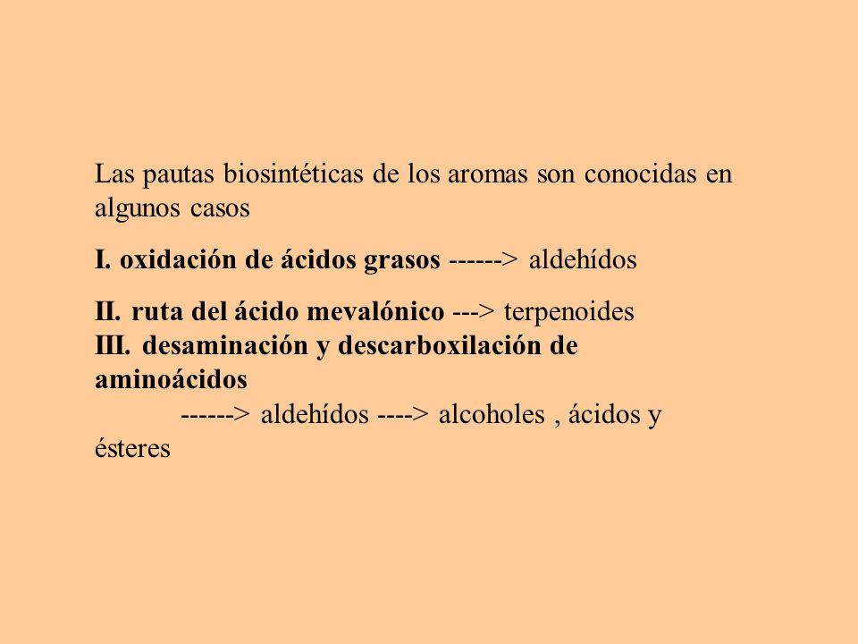 Las pautas biosintéticas de los aromas son conocidas en algunos casos