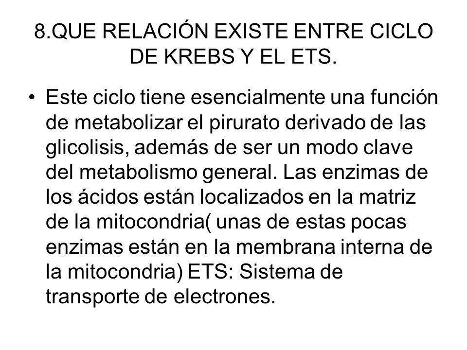 8.QUE RELACIÓN EXISTE ENTRE CICLO DE KREBS Y EL ETS.
