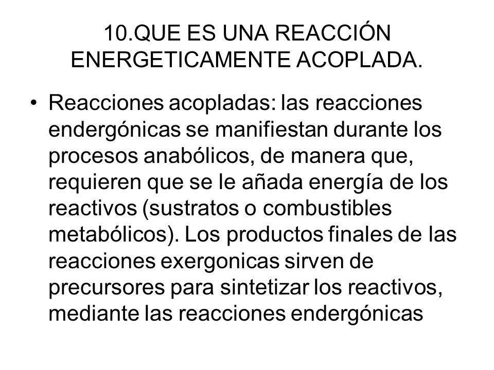 10.QUE ES UNA REACCIÓN ENERGETICAMENTE ACOPLADA.