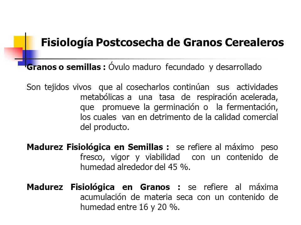 Fisiología Postcosecha de Granos Cerealeros