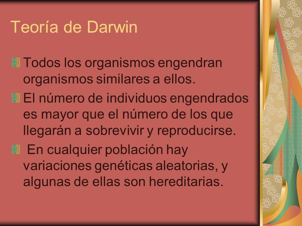 Teoría de Darwin Todos los organismos engendran organismos similares a ellos.