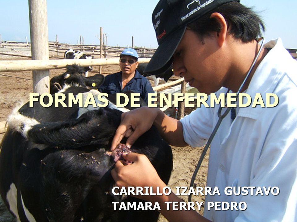 FORMAS DE ENFERMEDAD CARRILLO IZARRA GUSTAVO TAMARA TERRY PEDRO
