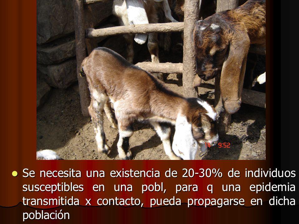 Se necesita una existencia de 20-30% de individuos susceptibles en una pobl, para q una epidemia transmitida x contacto, pueda propagarse en dicha población