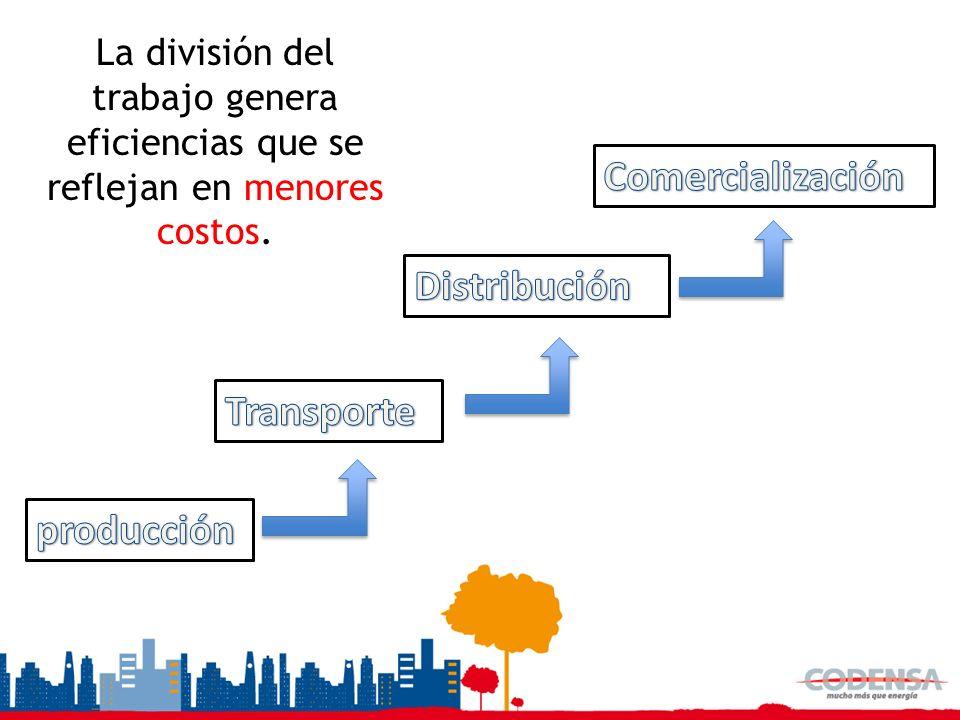 Cadena productiva Comercialización Distribución Transporte producción