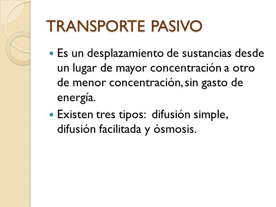 TRANSPORTE PASIVO Es un desplazamiento de sustancias desde un lugar de mayor concentración a otro de menor concentración, sin gasto de energía.