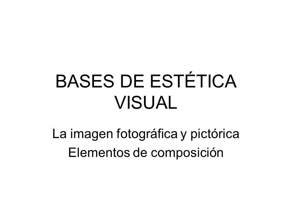BASES DE ESTÉTICA VISUAL