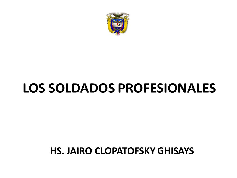 LOS SOLDADOS PROFESIONALES