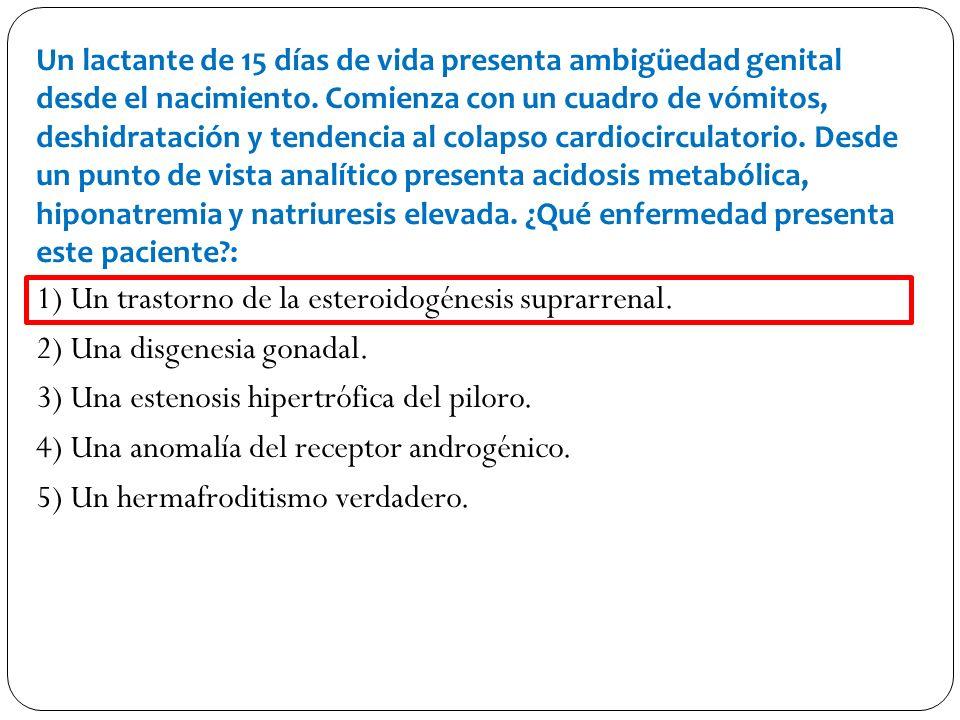 1) Un trastorno de la esteroidogénesis suprarrenal.