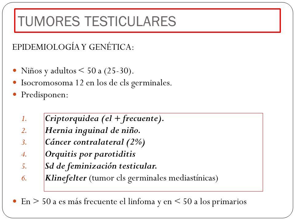 TUMORES TESTICULARES EPIDEMIOLOGÍA Y GENÉTICA: