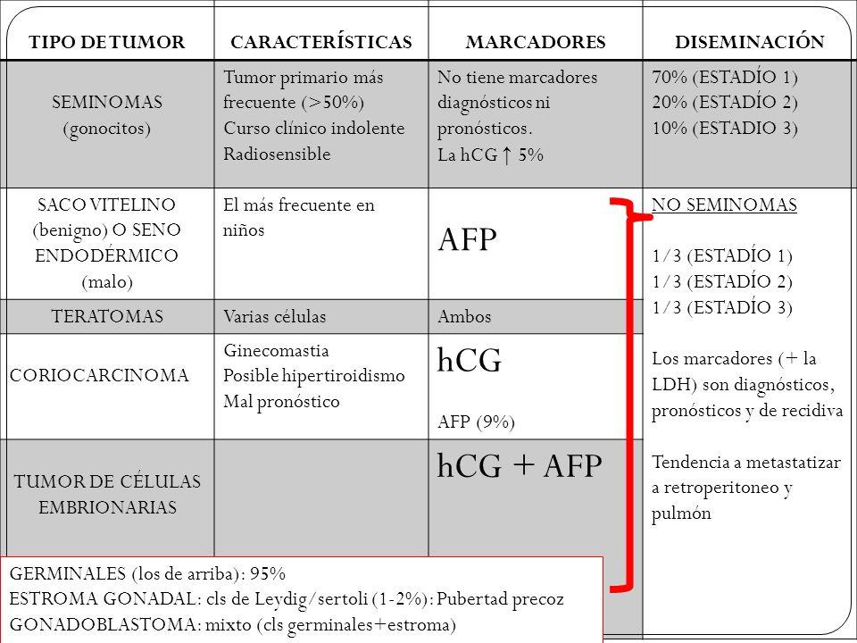 AFP hCG hCG + AFP TIPO DE TUMOR CARACTERÍSTICAS MARCADORES