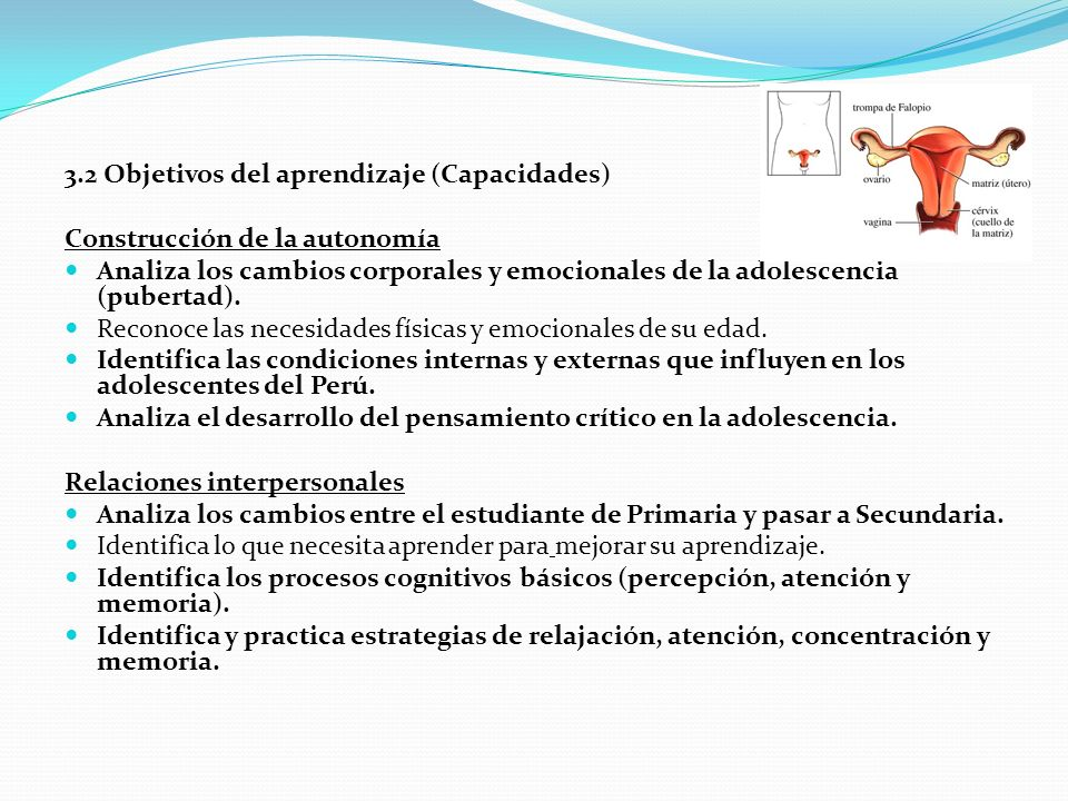 3.2 Objetivos del aprendizaje (Capacidades)