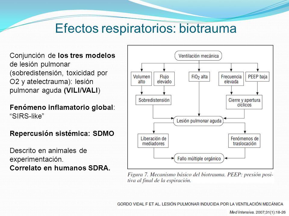 Efectos respiratorios: biotrauma