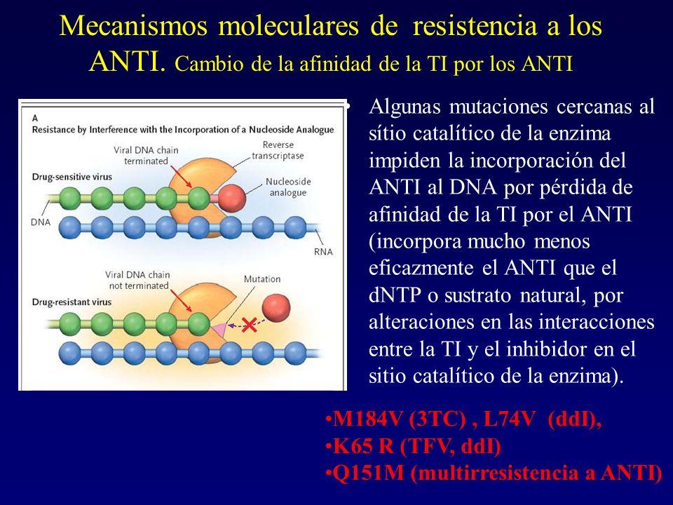 Mecanismos moleculares de resistencia a los ANTI