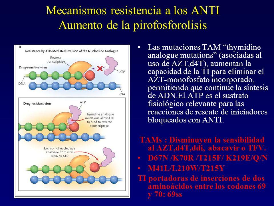 Mecanismos resistencia a los ANTI Aumento de la pirofosforolisis