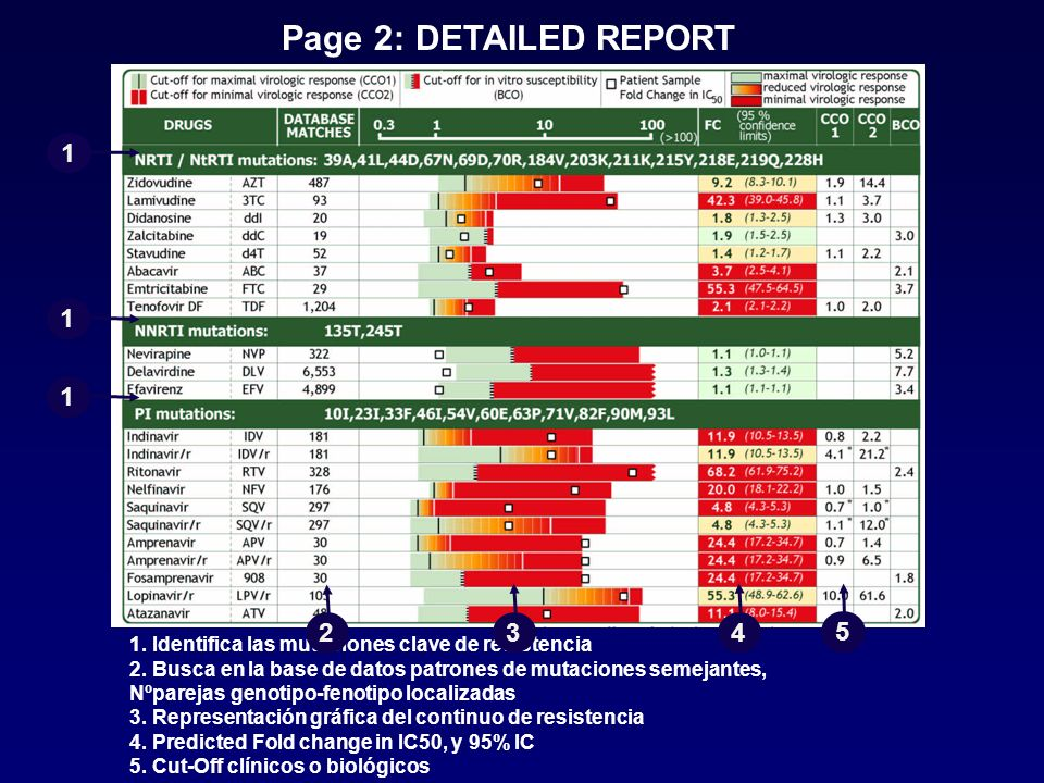 Page 2: DETAILED REPORT 1. 1. 1. 2. 3. 4. 5. 1. Identifica las mutaciones clave de resistencia.