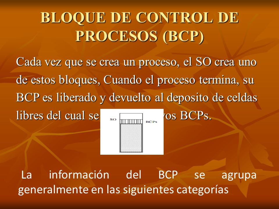 BLOQUE DE CONTROL DE PROCESOS (BCP)