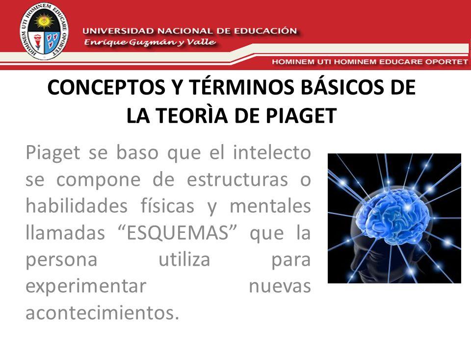 CONCEPTOS Y TÉRMINOS BÁSICOS DE LA TEORÌA DE PIAGET