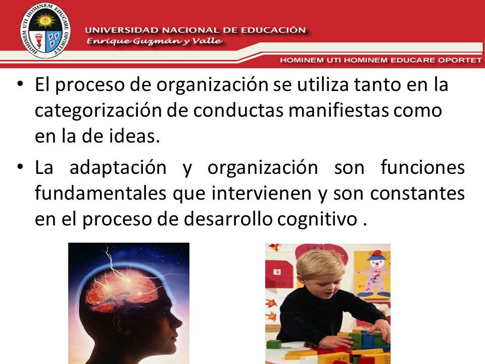 El proceso de organización se utiliza tanto en la categorización de conductas manifiestas como en la de ideas.