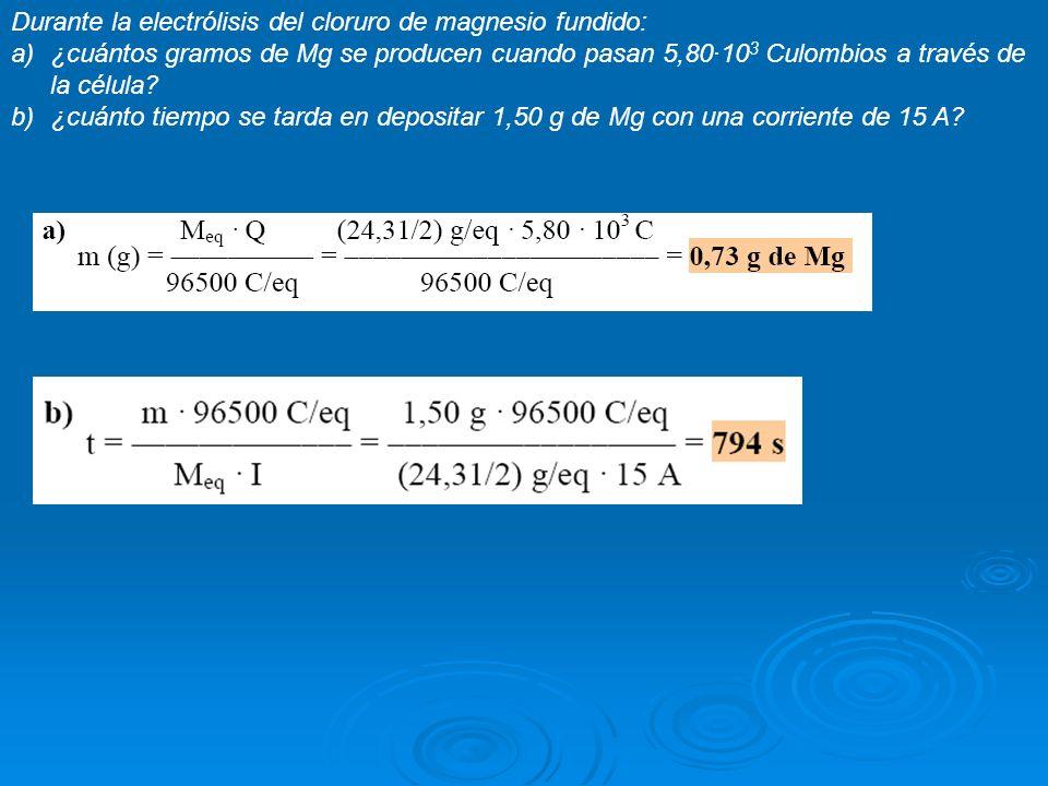 Durante la electrólisis del cloruro de magnesio fundido: