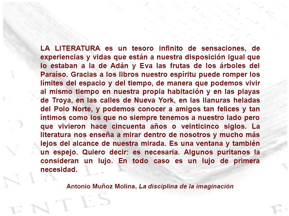 Antonio Muñoz Molina, La disciplina de la imaginación