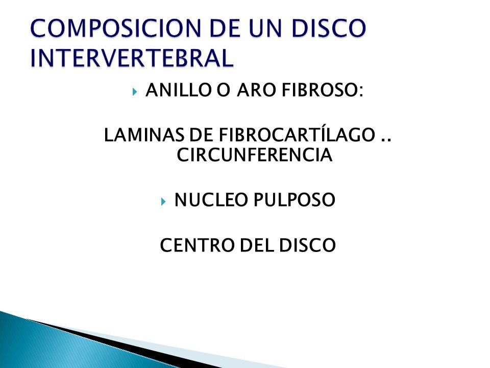 COMPOSICION DE UN DISCO INTERVERTEBRAL