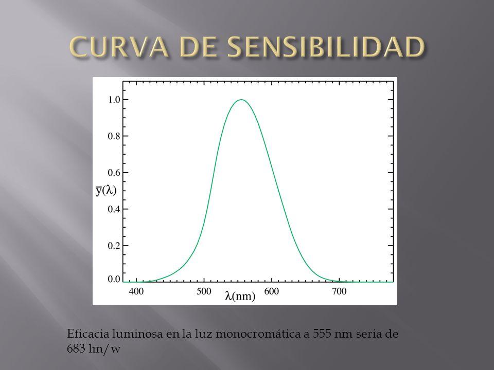 CURVA DE SENSIBILIDAD Eficacia luminosa en la luz monocromática a 555 nm seria de 683 lm/w