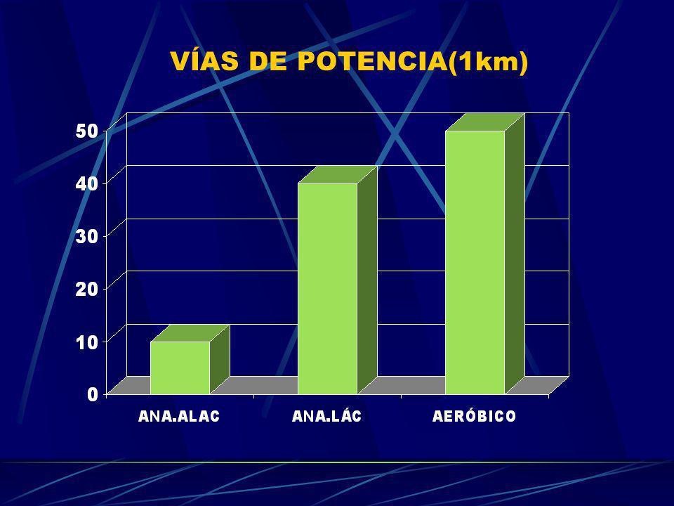 VÍAS DE POTENCIA(1km)