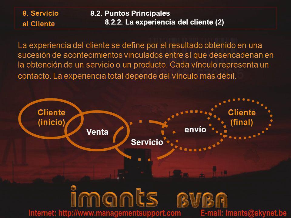 8.2. Puntos Principales 8.2.2. La experiencia del cliente (2)