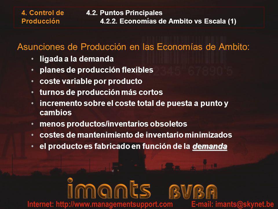 4.2. Puntos Principales 4.2.2. Economías de Ambito vs Escala (1)