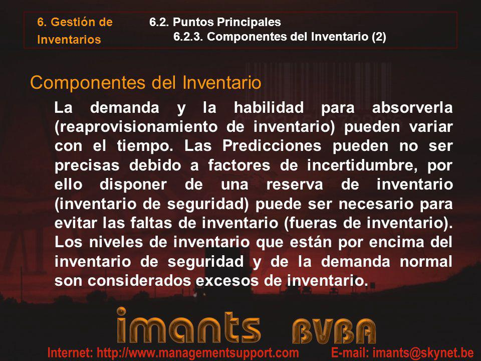 6.2. Puntos Principales 6.2.3. Componentes del Inventario (2)