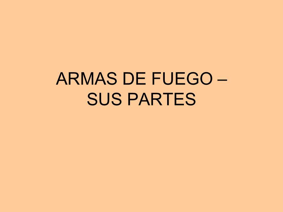 ARMAS DE FUEGO – SUS PARTES