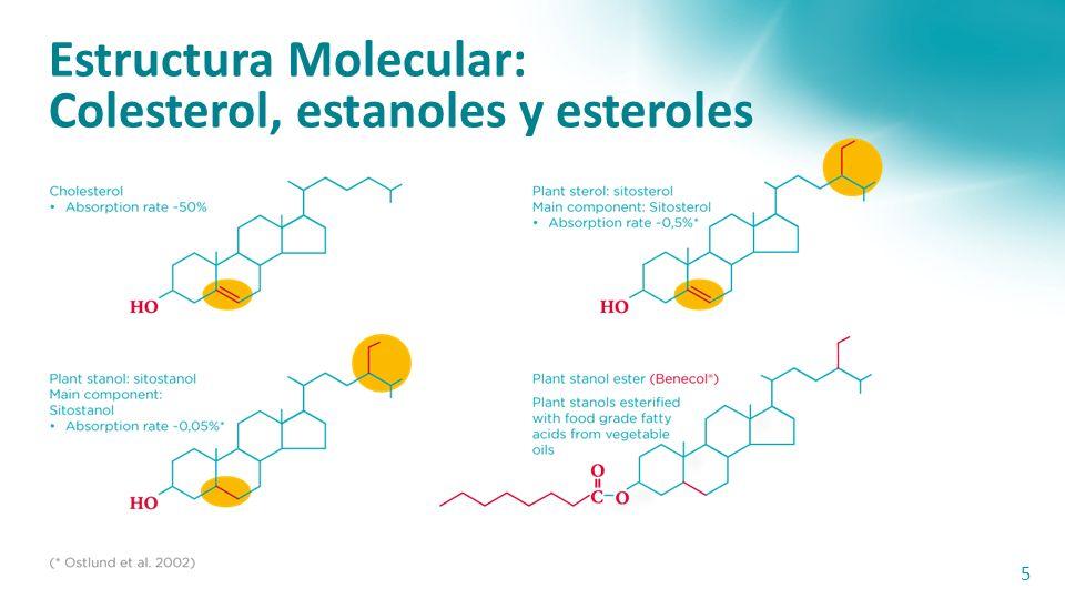 Estructura Molecular: Colesterol, estanoles y esteroles