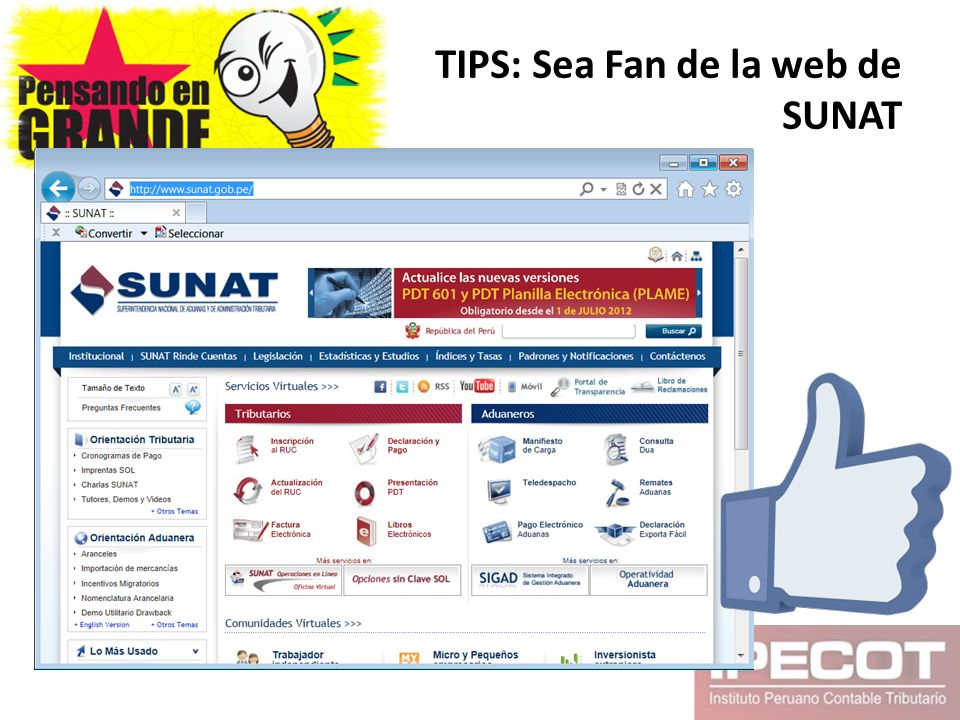 TIPS: Sea Fan de la web de SUNAT