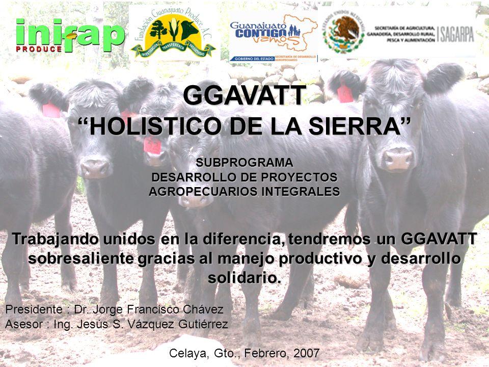 GGAVATT HOLISTICO DE LA SIERRA