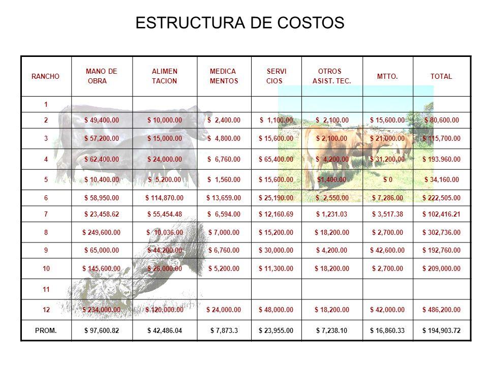 ESTRUCTURA DE COSTOS RANCHO MANO DE OBRA ALIMEN TACION MEDICA MENTOS